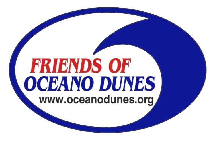 Friends of Oceano Dunes Files Quiet Title Lawsuit to Ensure Continued Camping and OHV Recreation at the Oceano Dunes State Vehicular Recreation Area